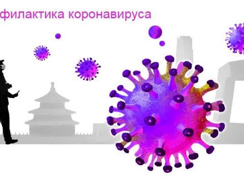 Ссылка на страницу Профилактика коронавируса