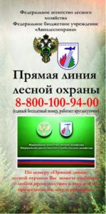 Памятка Прямая линия лесной охраны