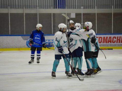 Хоккейная команда Акулы 2008