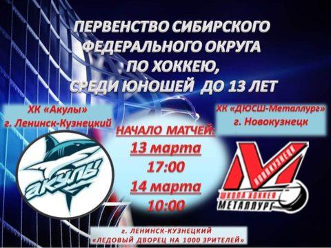Первенство СФО по хоккею. Акулы - ДЮСШ-Металлург
